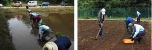 生き物豊かな里山農業プロジェクト(農業PJ)
