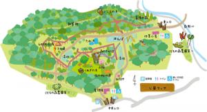 eye_map
