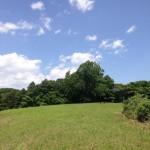 こどもの森公園、6月の植物モニタリングをしてきました。