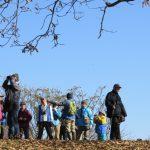 12月のガイドウォークは、谷戸の野鳥