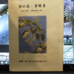 自然ガイドウォーク 春の花 芽吹き 4/20