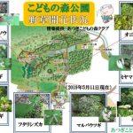 公園内の開花情報